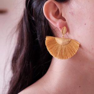 Earrings, jewellery
